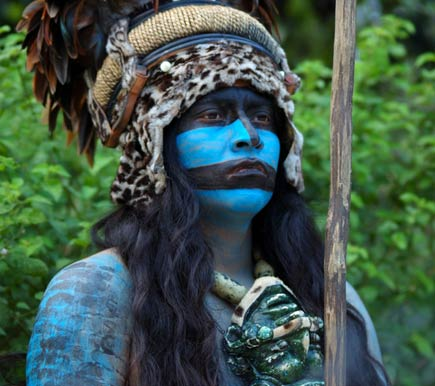 blue maya warrior